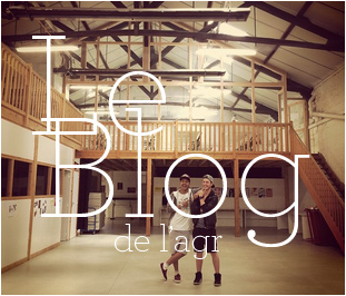 Visitez le Blog de l'Agr, l'école de l'image - Nantes