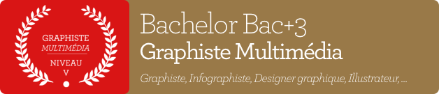 Bachelor Bac+3 Graphiste Multimédia