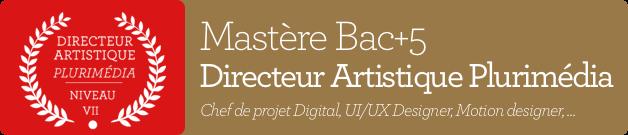 Master bac+5 Directeur Artistique Plurimedia